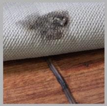 cord under rug hazard
